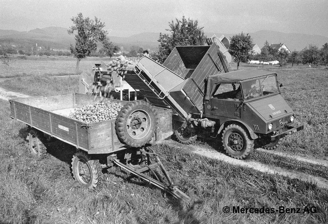 unimog u25 series 401 harvesting potatoes